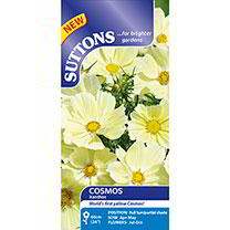 Cosmos Seeds - Xanthos