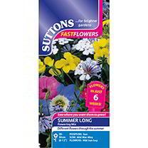 Summer Long Flowering Seeds - Mix