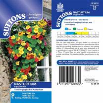 Nasturtium Seeds - Dayglow Mix