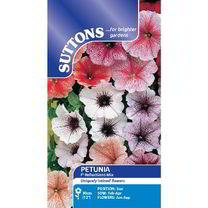 Petunia Seeds - F1 Reflections Mix