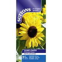 Sunflower Seeds - F1 Suntastic Yellow