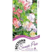 Sweet Pea Seeds - Fragrant Tumbler