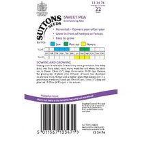 Sweet Pea Seeds - Everlasting Mix