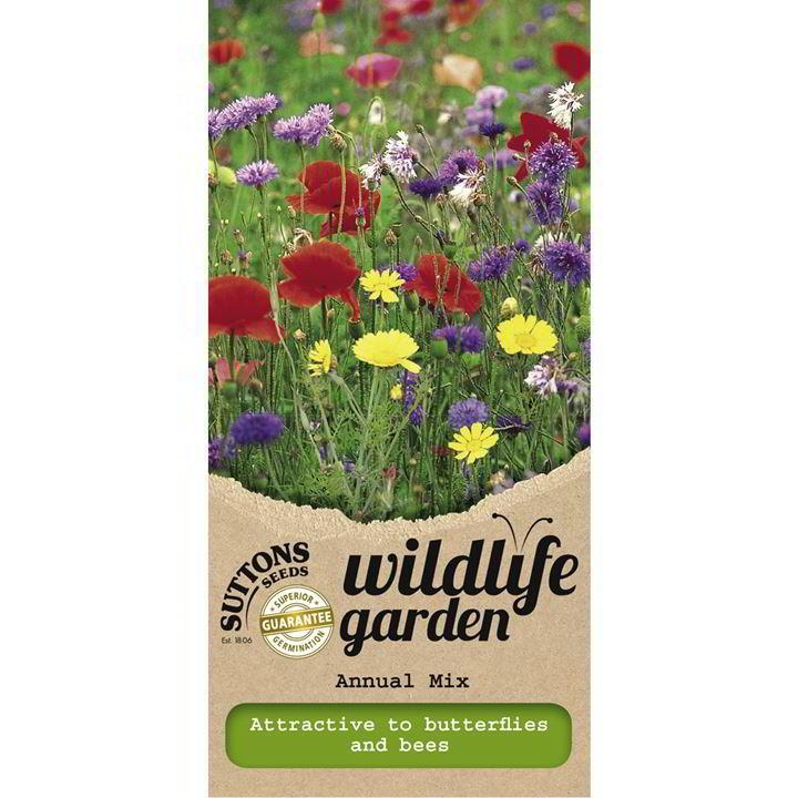 Wild Flower Seeds - Annual Mix