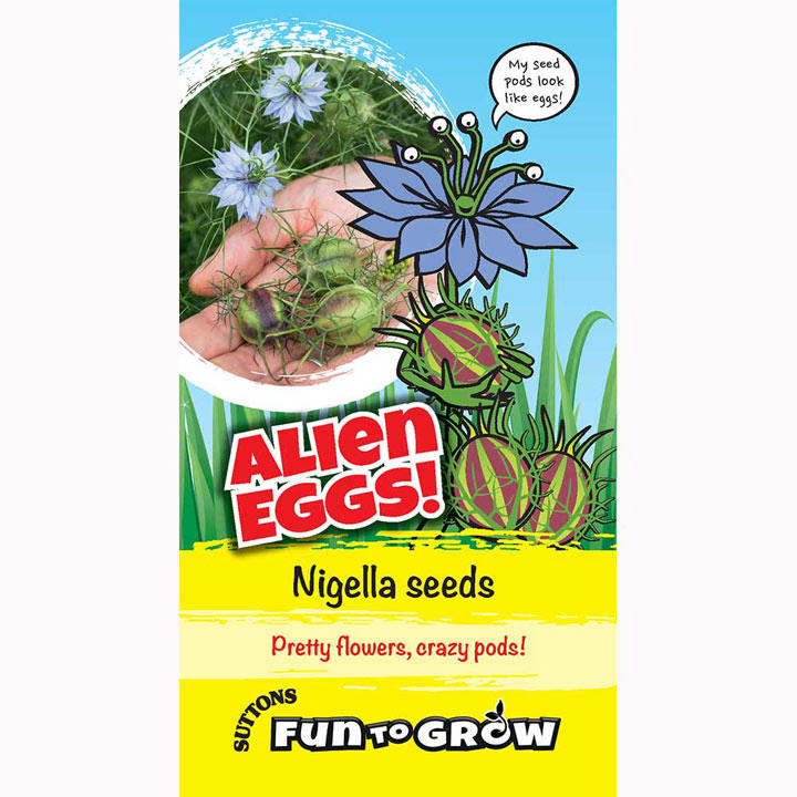 Nigella Seeds - Alien Eggs! (Persian Jewels Mix)