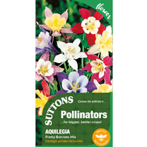 Aquilegia Seeds - Pretty Bonnets Mix