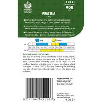 Phacelia Seeds - Lacy