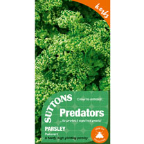 Parsley Seeds - Paravert