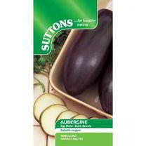 Aubergine Seeds - Black Beauty