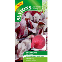 Beetroot Seeds - Bulls Blood