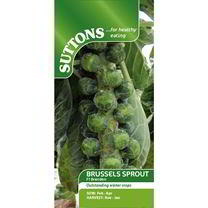 Brussels Sprout Seeds - F1 Brenden