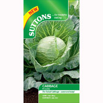 Cabbage Seeds - F1 Sunta