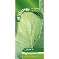 Cabbage Seeds - F1 Mozart