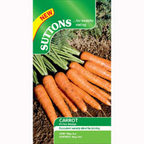Carrot Seeds - F1 Fire Wedge