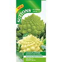 Cauliflower Seeds - Romanesco White and Green