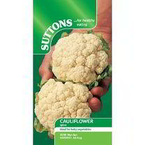 Cauliflower Seeds - Igloo