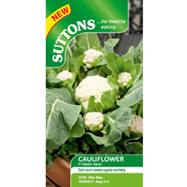 Cauliflower Seeds - F1 Multi-Headed