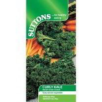 Kale Seeds - Dwarf Green Curled