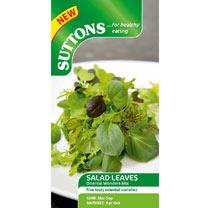 Salad Leaves Seeds - Oriental Wonders Mix