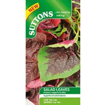 Salad Leaves Seeds - Andean Superfood Mix