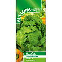 Lettuce Seeds - Webbs Wonderful