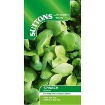 Spinach Seeds - F1 Amazon