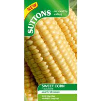 Sweet Corn Seeds - F1 Goldcrest