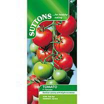 Tomato Seeds - F1 Fantasio