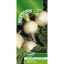 Turnip Seeds - Snowball