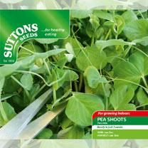 Pea Shoots Seeds - Twinkle