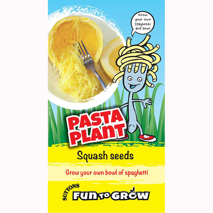Squash Seeds - Pasta Plant (Vegetable Spaghetti)
