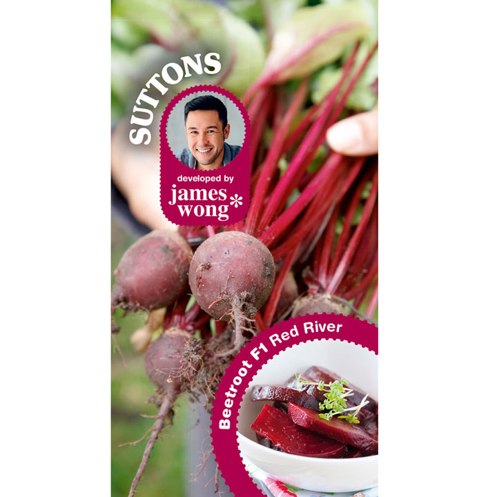 Beetroot - F1 Red River