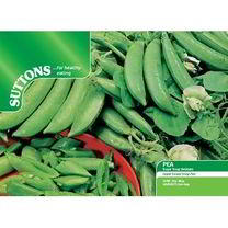 Pea Sugar Snap Seeds - Delikett