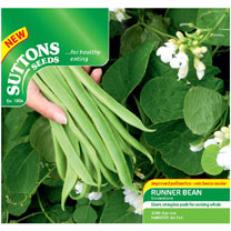 Bean (Runner) Seeds - Snowstorm