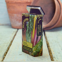 Seed Tin - Chard Bright Lights