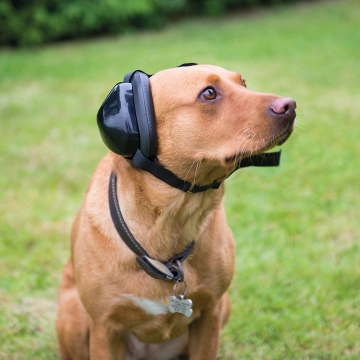 Mutt Muffs Dog Ear Defenders - Large Labrador