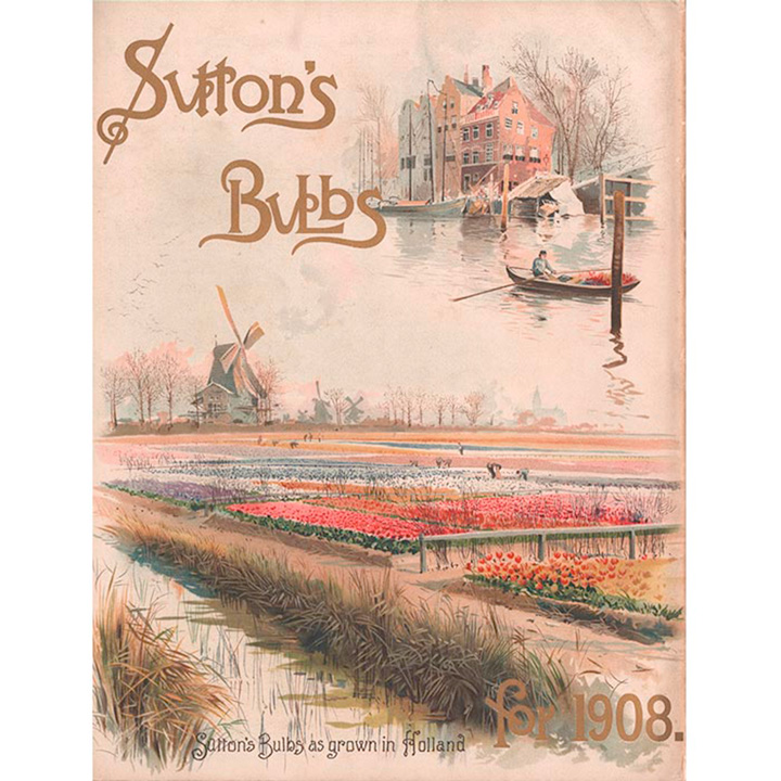 Jigsaw 1000 Pieces - Tulip Picking 1908