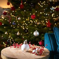 Amaryllis Wax Bulb - White/snow coating