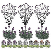 1 Square Metre Garden Pack
