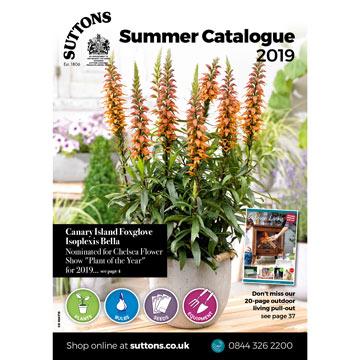 Suttons Summer Catalogue