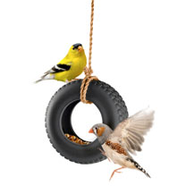 Tyre Swing Bird Feeder