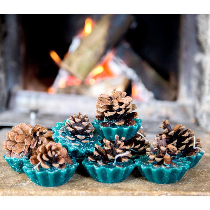 Pine Cone Firelighters