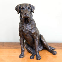 Labrador Bronze Sculpture