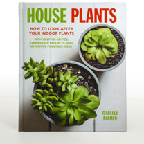 Image of House Plants - How to Look After Your Indoor Plants