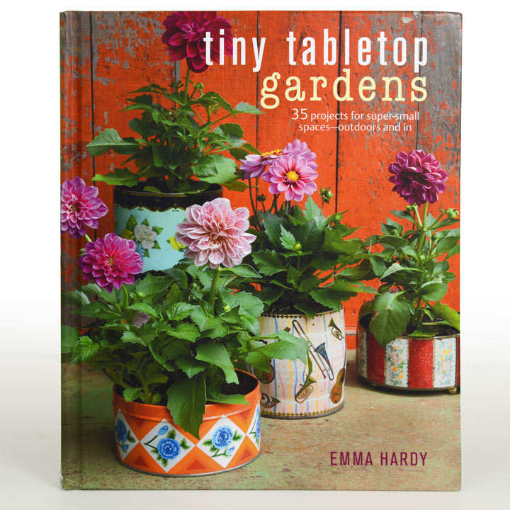 Tiny Tabletop Gardens