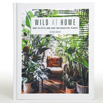 Wild At Home - How to Style and Care For Beautiful Plants