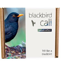 Blackbird Call
