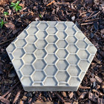 Honeycomb Stepping Stones Insect Drinker