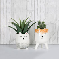 Animal Faces Planter Duo
