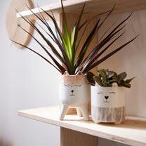 Spot Planter Duo